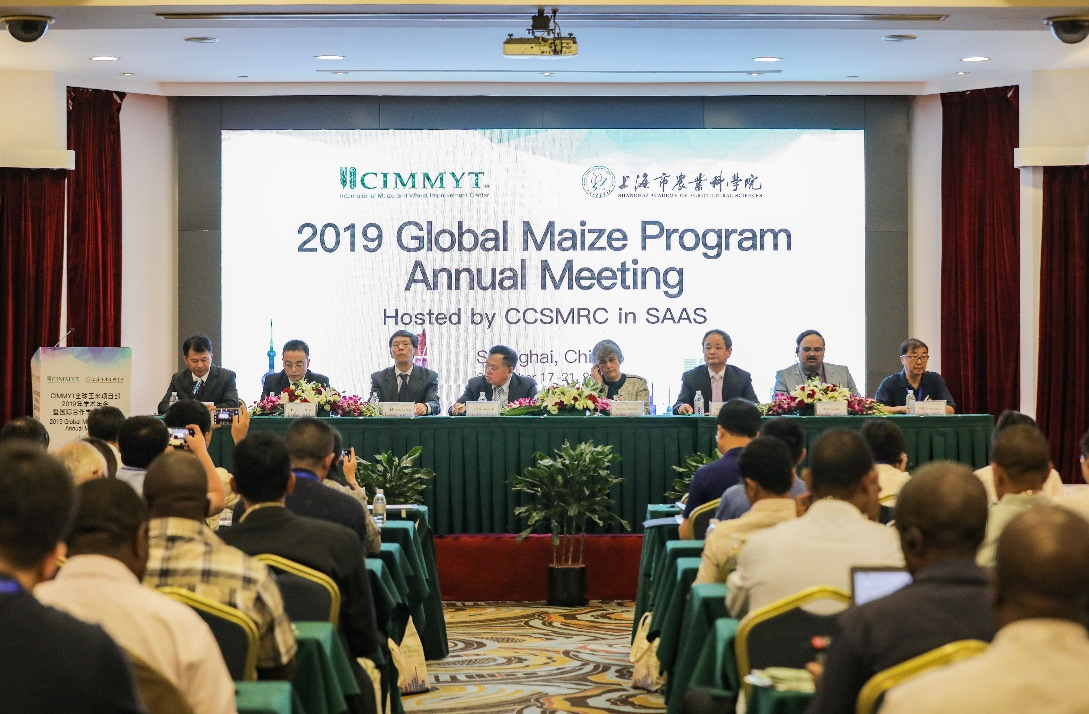 CIMMYT全球玉米项目2019学术年会暨CIMMYT-中国玉米国际合作学术研讨会在上海召开