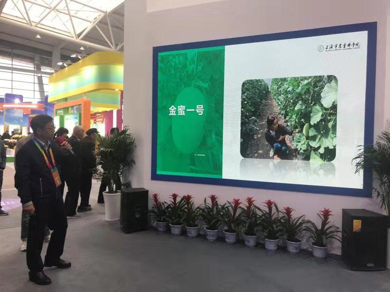 园艺所新优品种亮相第二十六届杨凌农高会