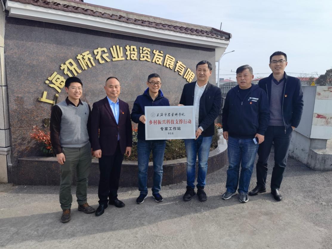 食用菌所与上海祝桥农投乡村振兴专家工作站